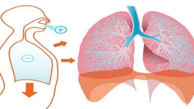 Photo of Ces aliments nettoient vos poumons en profondeur