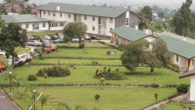 Photo de Drame : Un homme poignarde sa petite amie à mort à Buea